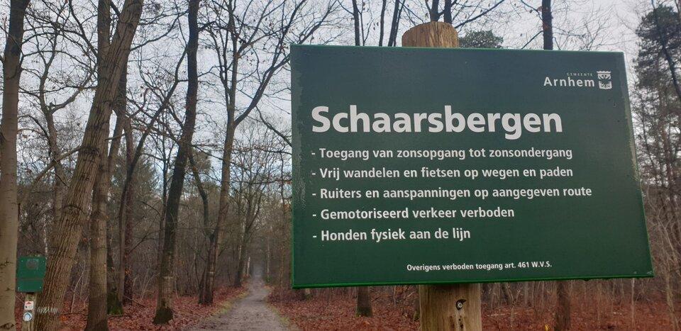 Bos in Schaarsbergen