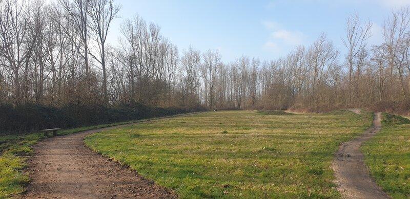 Losloopgebied Biggekerkse Bos